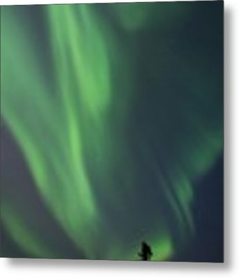 chasing lights II natural Metal Print by Priska Wettstein