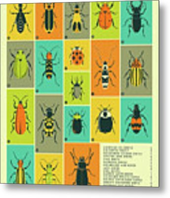 Common Beetles Of North America Metal Print by Jazzberry Blue