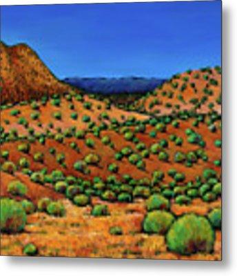 Desert Afternoon Metal Print by Johnathan Harris