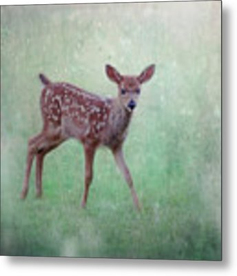 Emerald Morning Metal Print by Sally Banfill