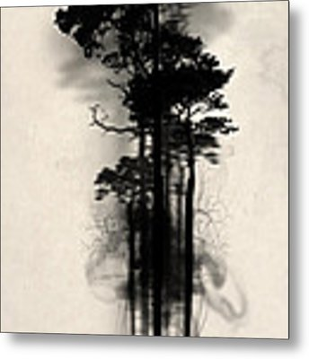 Enchanted Forest Metal Print by Nicklas Gustafsson