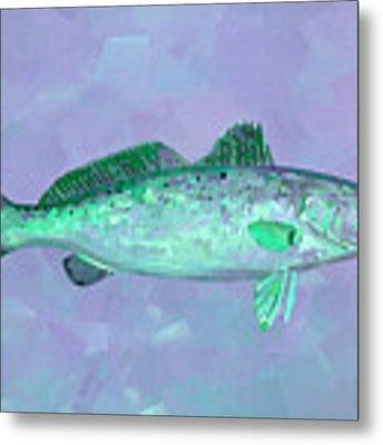 Fanciful Lavender Mint Sea Trout Metal Print by Shelli Fitzpatrick