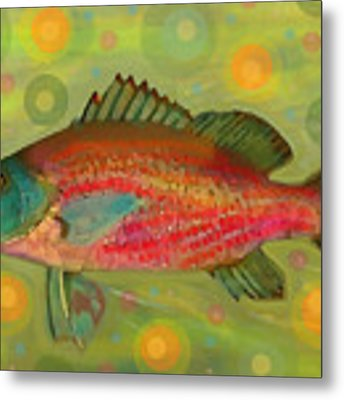 Fanciful Pink Snapper  Metal Print by Shelli Fitzpatrick