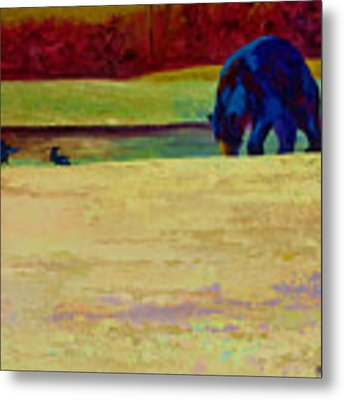Foraging At Neets Bay - Black Bear Metal Print