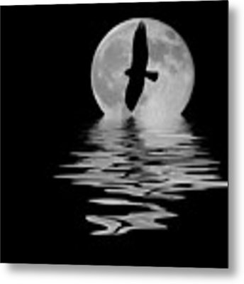Hawk In The Moonlight 2 Metal Print by Shane Bechler