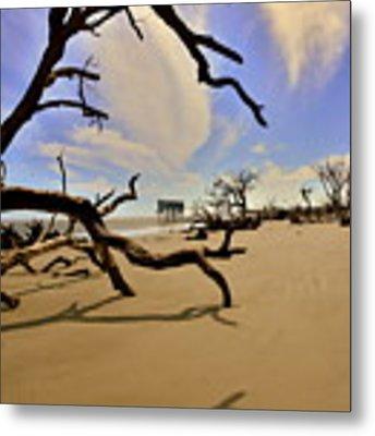 Little Blue And Driftwood Beach Metal Print by Lisa Wooten