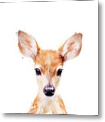 Little Deer Metal Print by Amy Hamilton