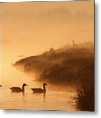 Magical Misty  Morning Metal Print