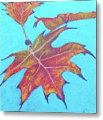 Drifting Into Fall Metal Print by Phyllis Howard