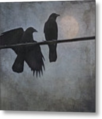 Night Watch  Metal Print by Sally Banfill