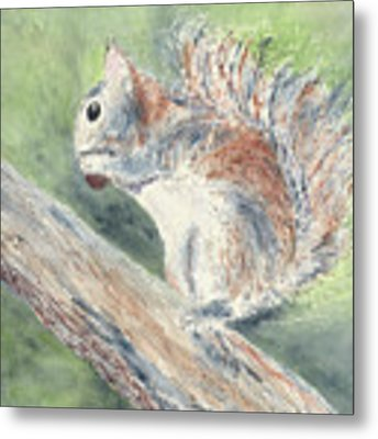 Nut Job Metal Print by Kathryn Riley Parker