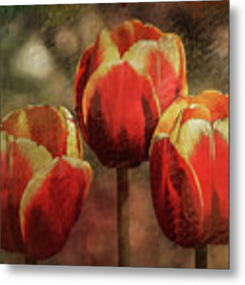 Painted Tulips Metal Print by Richard Ricci