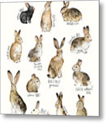 Rabbits And Hares Metal Print
