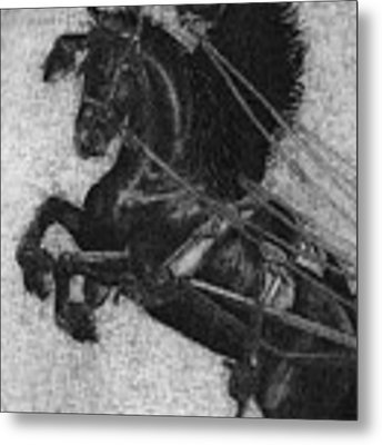Rearing Horses Metal Print by Eric Fan