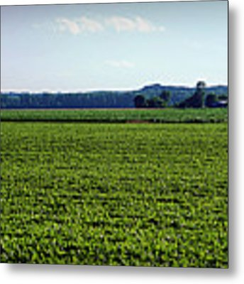 Riverbottom Farms Metal Print by Cricket Hackmann