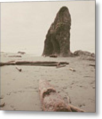 Ruby Beach No. 16 Metal Print by Desmond Manny