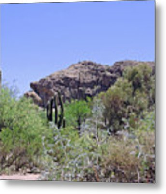 Saguaros Metal Print by Grace Dillon