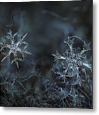 Snowflake Photo - When Winters Meets - 2 Metal Print by Alexey Kljatov
