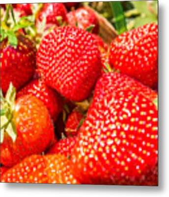 Strawberries In Natural Background Metal Print by Alex Grichenko