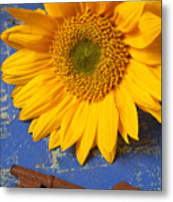 Sunflower And Skeleton Key Metal Print