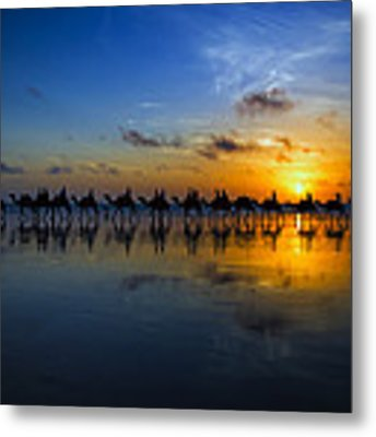Sunset Camel Ride Metal Print by Louise Wolbers