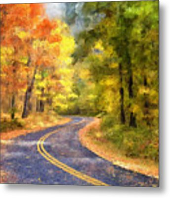 The Sunny Side Of The Street Metal Print by Lois Bryan