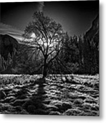 The Winter Spirit Metal Print by Simon Chenglu