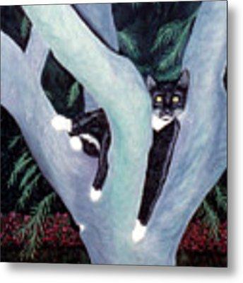 Tuxedo Cat In Mimosa Tree Metal Print by Karen Zuk Rosenblatt