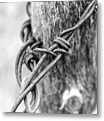 Vintage Twist Metal Print by Ann E Robson