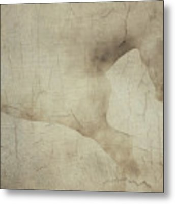 Wall With Picture Of A White Horse Metal Print by Jan Keteleer