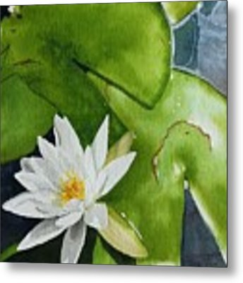 Water Lilly Metal Print by Gigi Dequanne