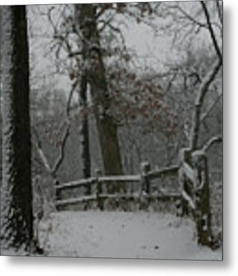 Winter Fence Trail Metal Print by Dylan Punke
