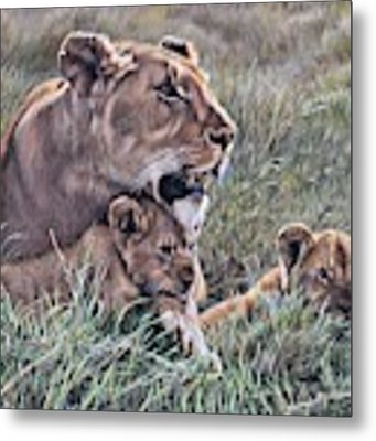 A Quiet Moment Lioness And Lion Cubs Metal Print by Alan M Hunt