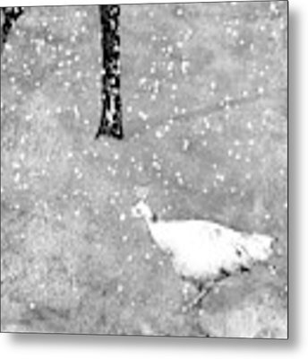 And Winter Lingered Metal Print by Mary Lee Dereske