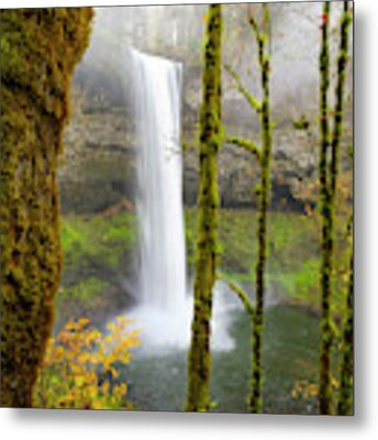 Autumn At Silver Falls State Park Metal Print by Nicole Young