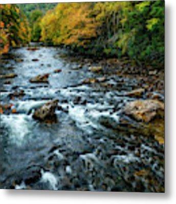 Autumn Day On Cranberry River Metal Print by Thomas R Fletcher