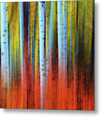 Autumn In Color Metal Print by John De Bord