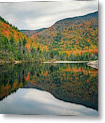 Beaver Pond Metal Print by James Billings