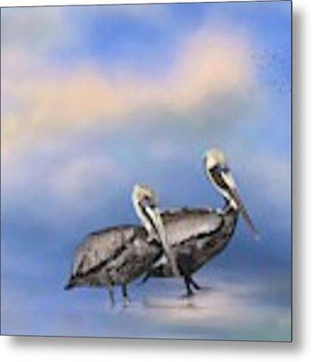 Brown Pelicans At The Shore Metal Print by Kim Hojnacki