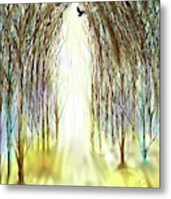 Cathedral Forest Metal Print by Darren Cannell