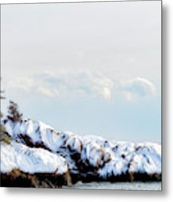 Crow Island, Winter Light Metal Print by Michael Hubley