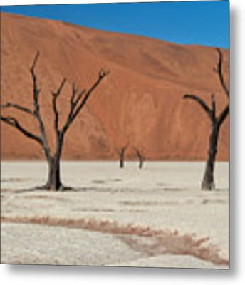 Deadvlei Namibia  Metal Print by Rand