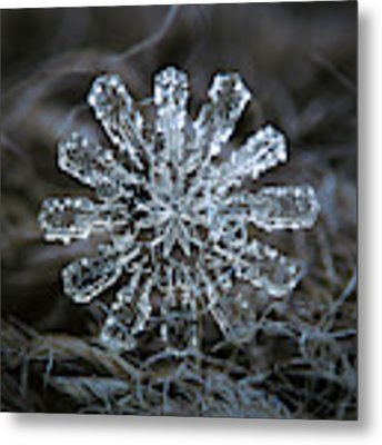 December 18 2015 - Snowflake 3 Metal Print by Alexey Kljatov