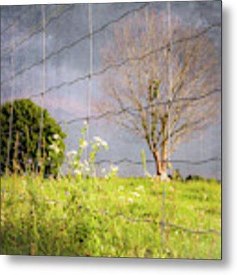 Farm Scene - A New Perspecitve Metal Print by Garvin Hunter