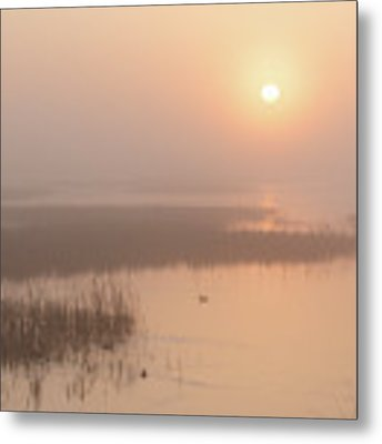 Foggy Sunrise At Cheyenne Bottoms -02 Metal Print by Rob Graham