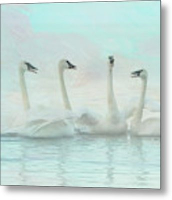 Four Swans Watercolor Group Metal Print by Patti Deters