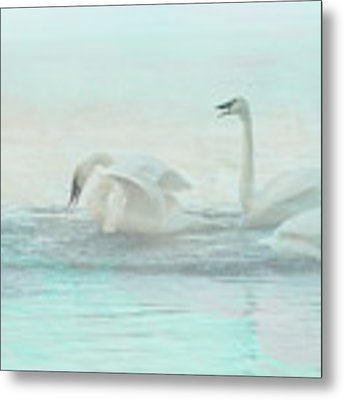 Four Swans Watercolor Group Play Metal Print by Patti Deters