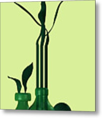 Green Still Life With Cool Elements Metal Print by Alberto RuiZ
