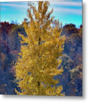 Jogger On Trail In Fall Metal Print by Dan Friend