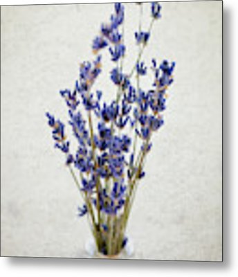 Lavender Metal Print by Nicole Young